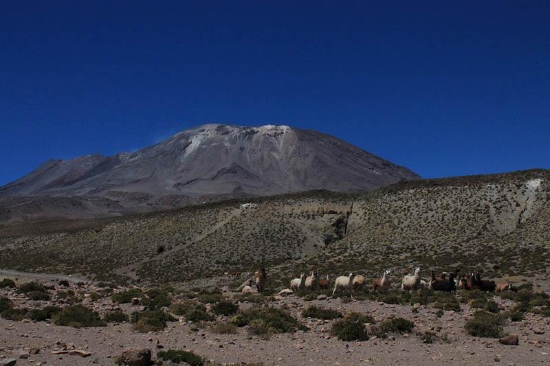 Lascar Volcano (5.500 masl)