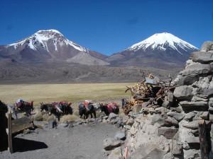 Payachatas Volcanoes