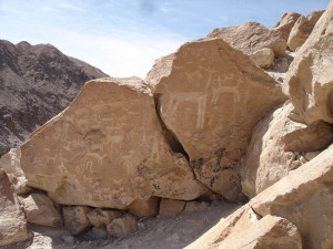 Petroglyfs, Codpa Valley (3)