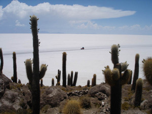 Uyni Salt Flat from Incahuasi Isle